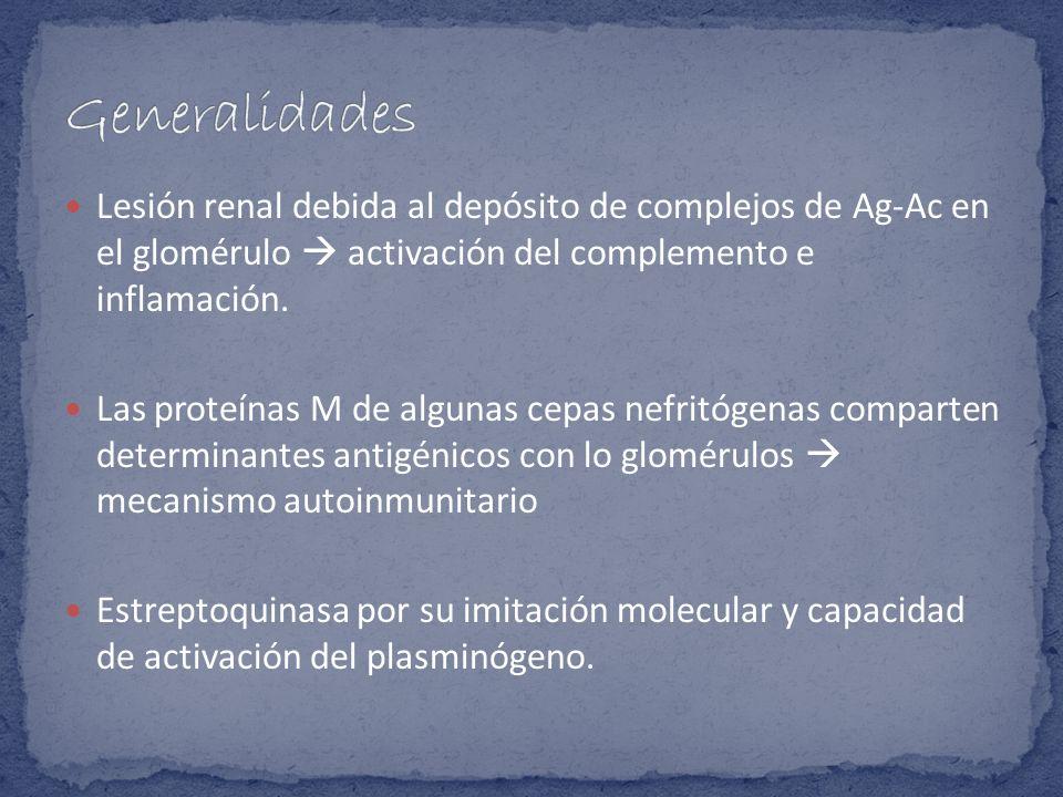 Generalidades Lesión renal debida al depósito de complejos de Ag-Ac en el glomérulo  activación del complemento e inflamación.