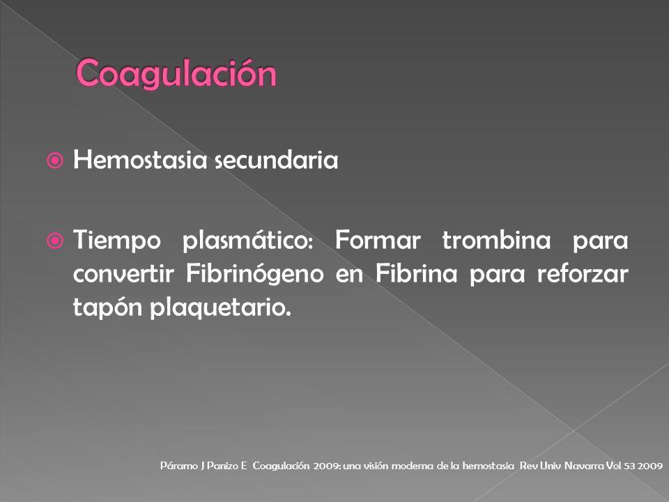 Coagulación Hemostasia secundaria