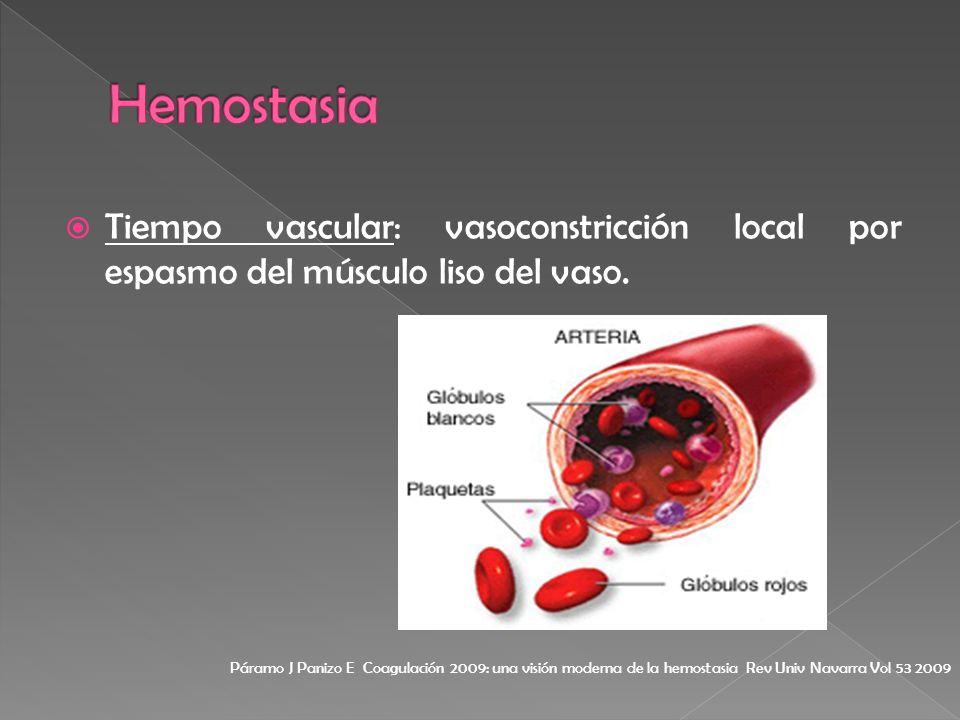 Hemostasia Tiempo vascular: vasoconstricción local por espasmo del músculo liso del vaso.