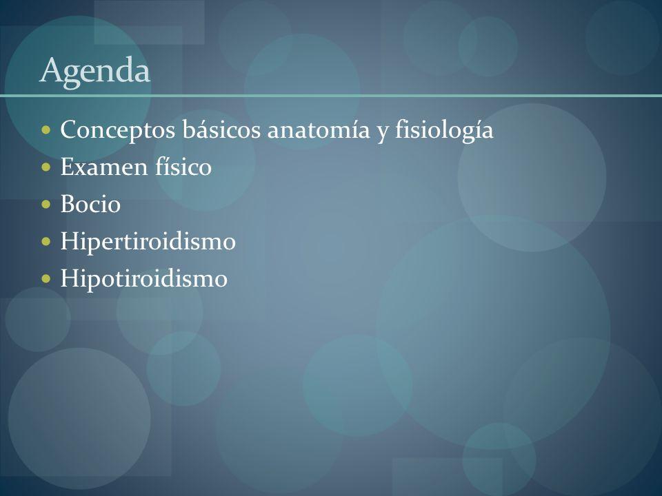 Agenda Conceptos básicos anatomía y fisiología Examen físico Bocio