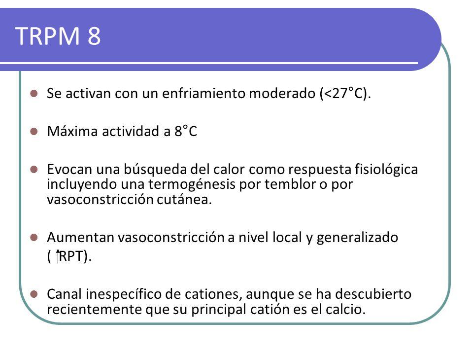 TRPM 8 Se activan con un enfriamiento moderado (<27°C).