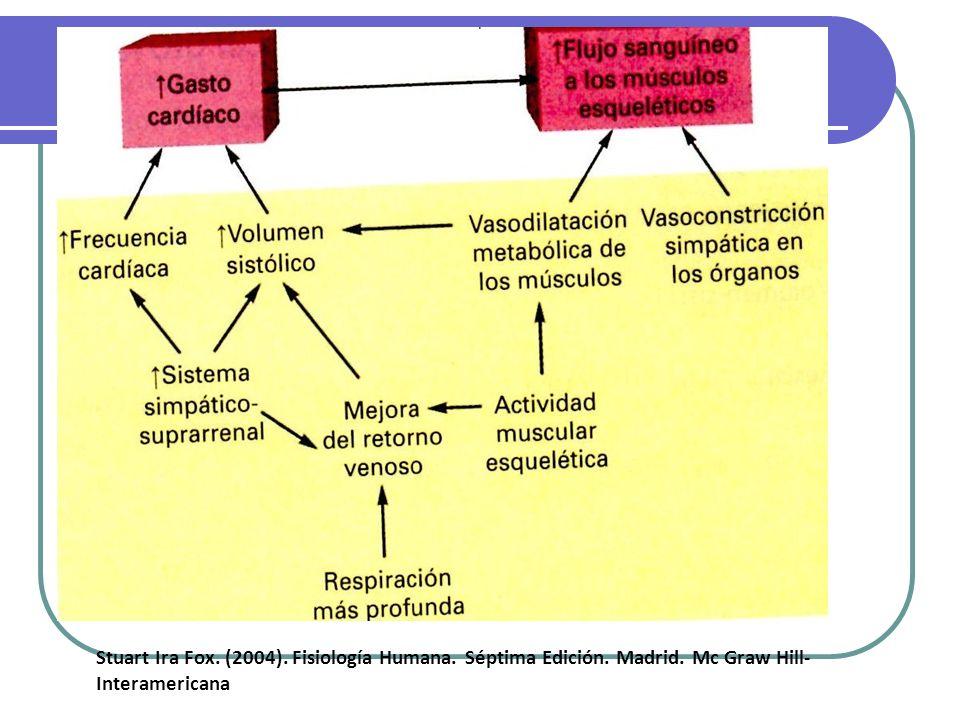 Stuart Ira Fox. (2004). Fisiología Humana. Séptima Edición.