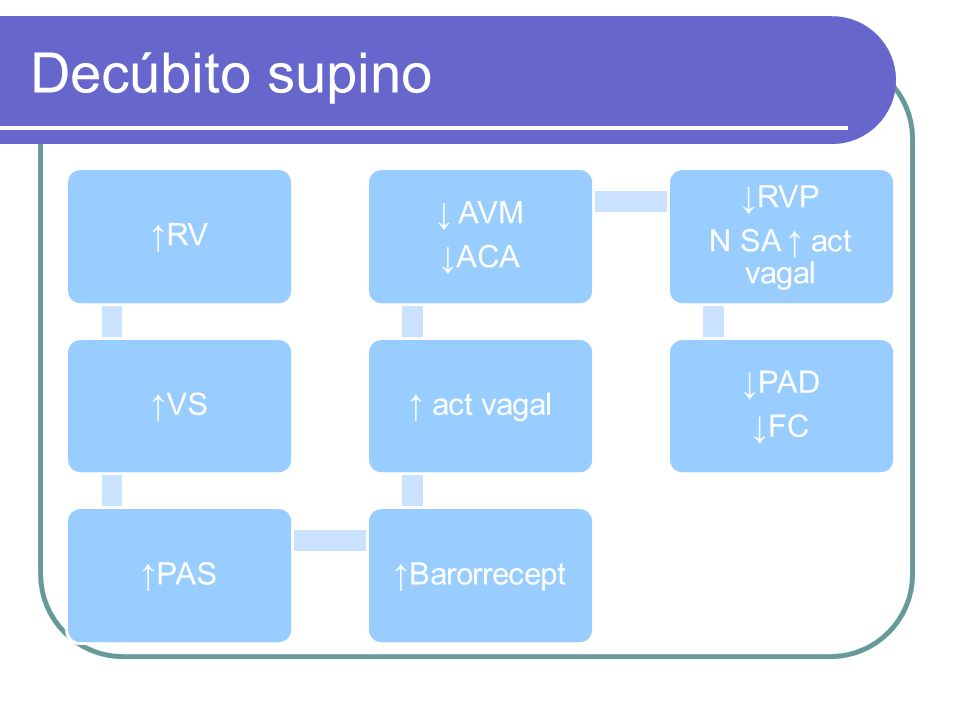 Decúbito supino ↑RV. ↑VS. ↑PAS. ↑Barorrecept. ↑ act vagal. ↓ACA. ↓ AVM. N SA ↑ act vagal. ↓RVP.
