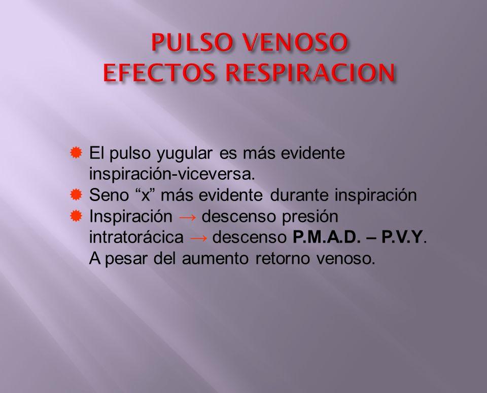 PULSO VENOSO EFECTOS RESPIRACION