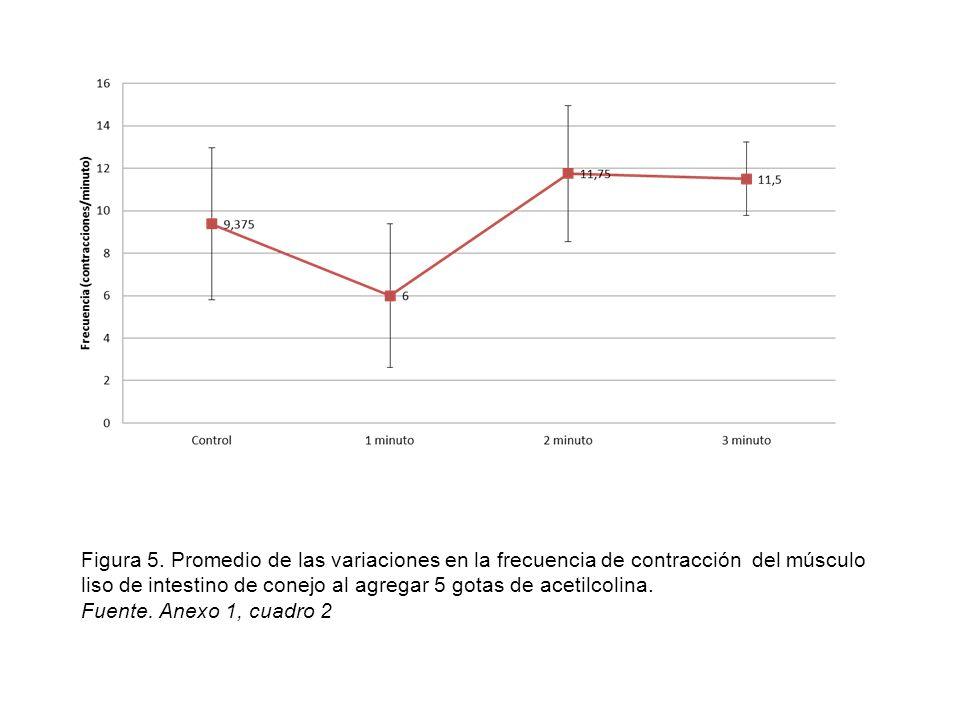 Figura 5. Promedio de las variaciones en la frecuencia de contracción del músculo liso de intestino de conejo al agregar 5 gotas de acetilcolina.