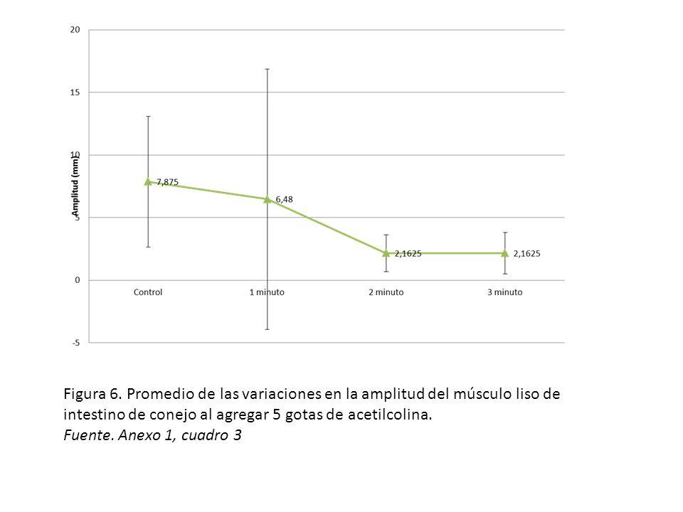 Figura 6. Promedio de las variaciones en la amplitud del músculo liso de intestino de conejo al agregar 5 gotas de acetilcolina.