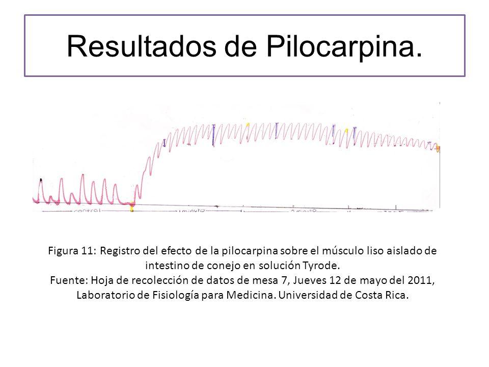 Resultados de Pilocarpina.