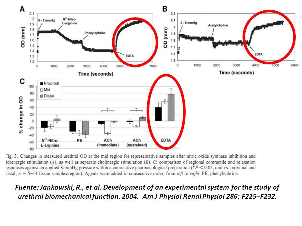 Fuente: Jankowski, R. , et al