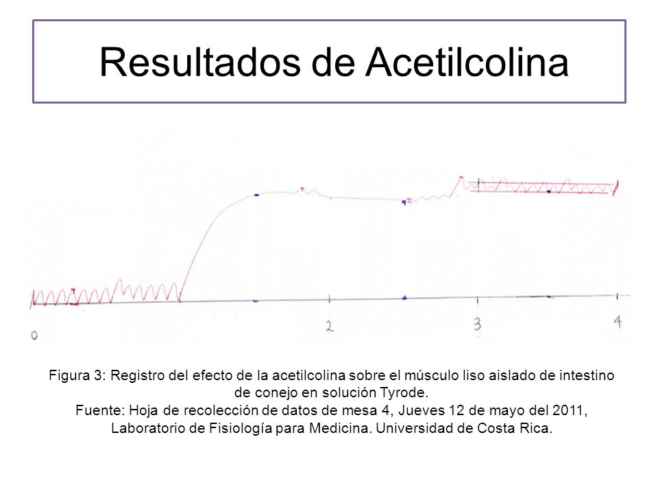 Resultados de Acetilcolina