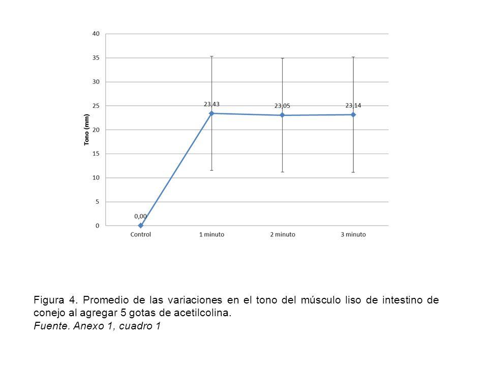 Figura 4. Promedio de las variaciones en el tono del músculo liso de intestino de conejo al agregar 5 gotas de acetilcolina.