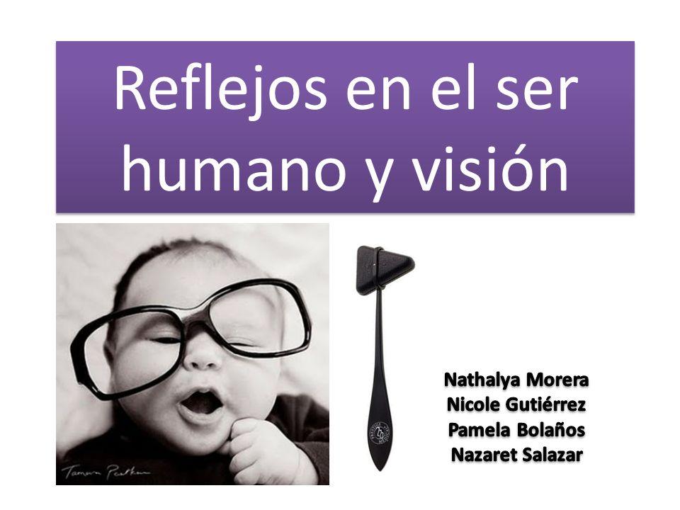 Reflejos en el ser humano y visión