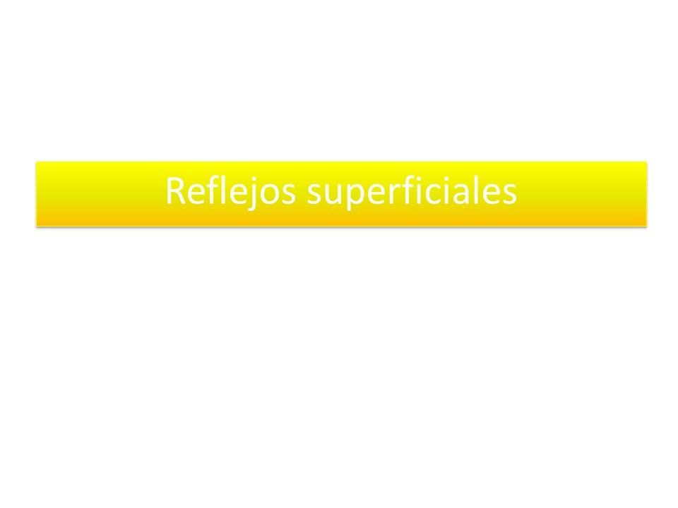 Reflejos superficiales