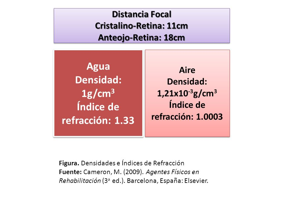 Cristalino-Retina: 11cm
