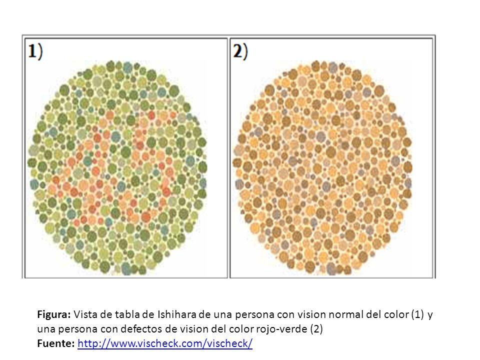 Figura: Vista de tabla de Ishihara de una persona con vision normal del color (1) y una persona con defectos de vision del color rojo-verde (2)