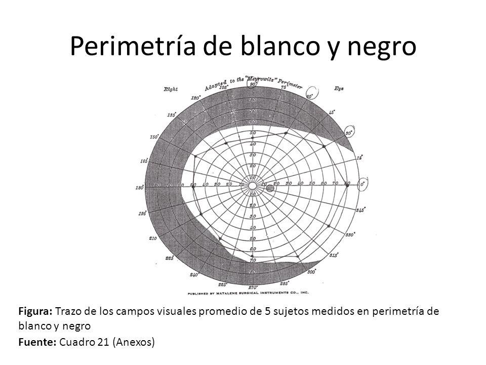 Perimetría de blanco y negro