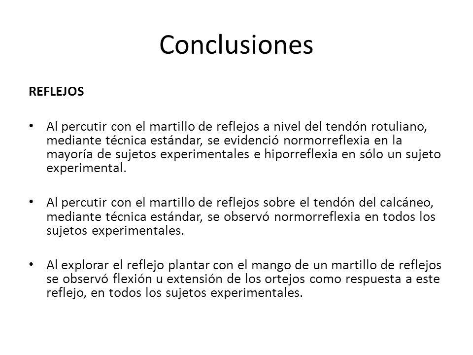 Conclusiones REFLEJOS