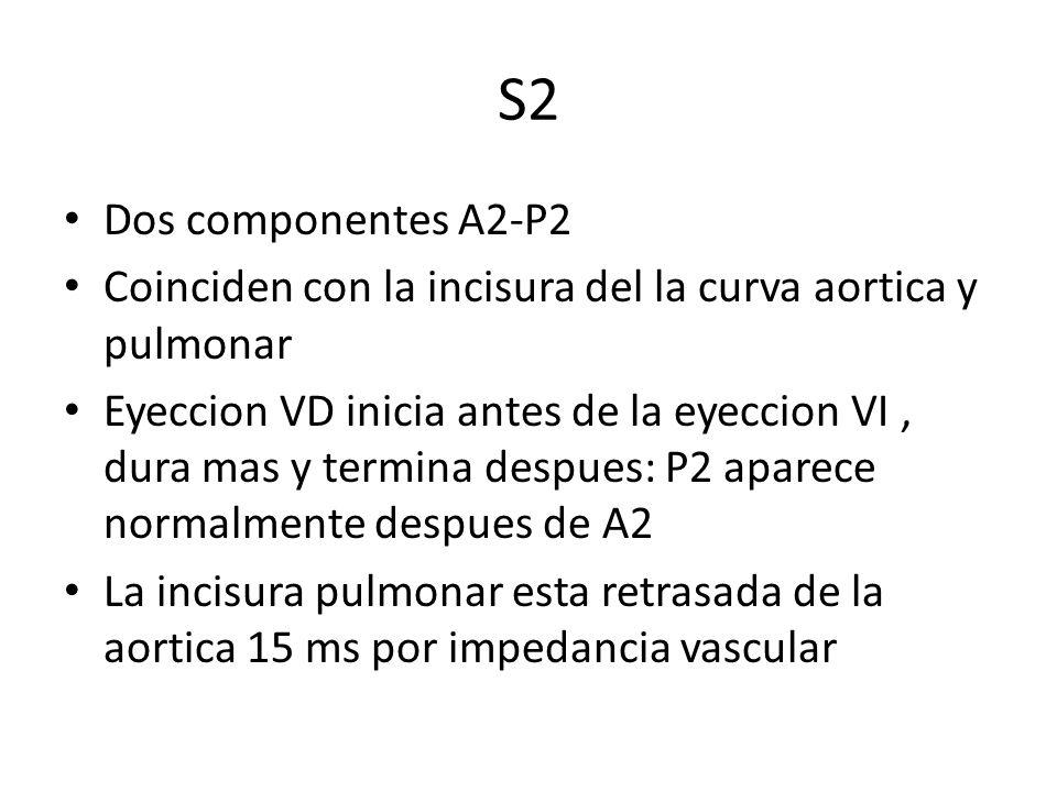 S2 Dos componentes A2-P2. Coinciden con la incisura del la curva aortica y pulmonar.