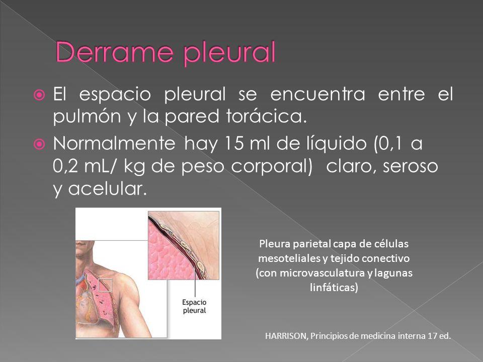 Derrame pleuralEl espacio pleural se encuentra entre el pulmón y la pared torácica.