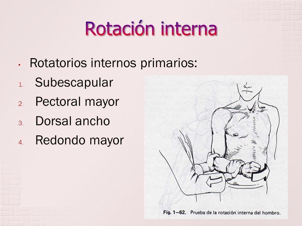 Rotación interna Rotatorios internos primarios: Subescapular