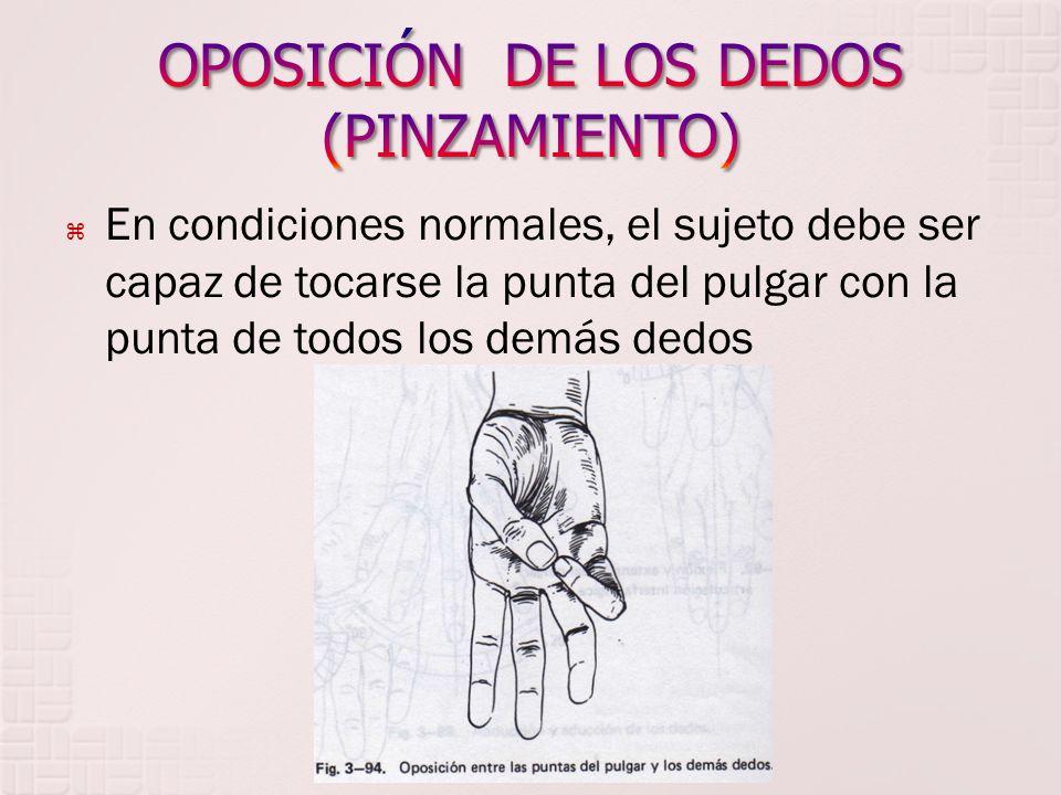 OPOSICIÓN DE LOS DEDOS (PINZAMIENTO)