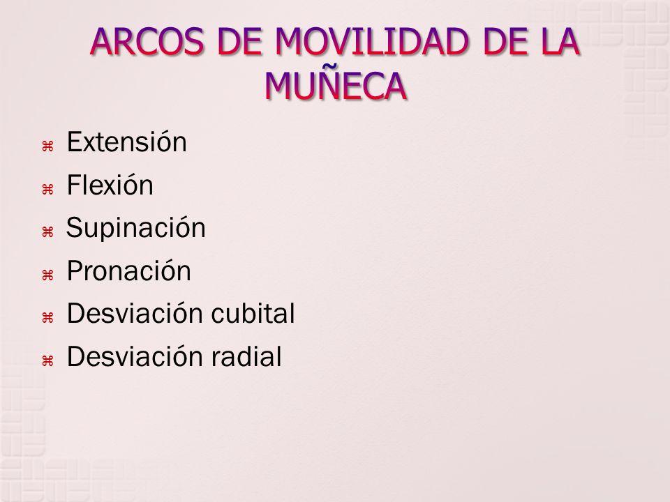 ARCOS DE MOVILIDAD DE LA MUÑECA