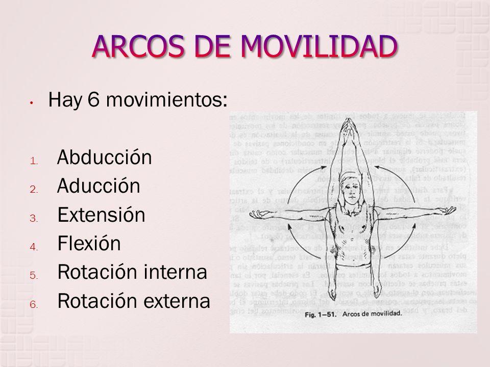 ARCOS DE MOVILIDAD Hay 6 movimientos: Abducción Aducción Extensión