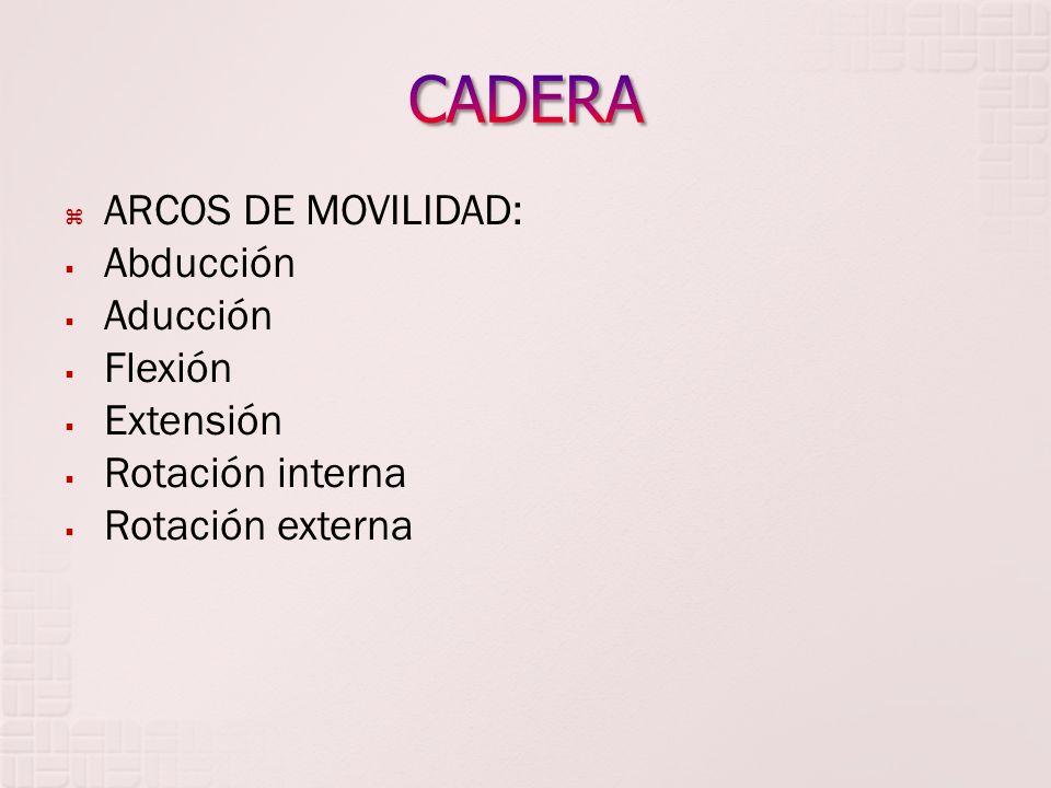 CADERA ARCOS DE MOVILIDAD: Abducción Aducción Flexión Extensión