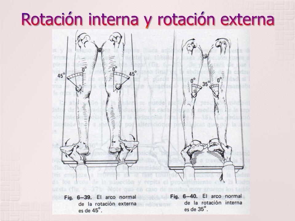 Rotación interna y rotación externa