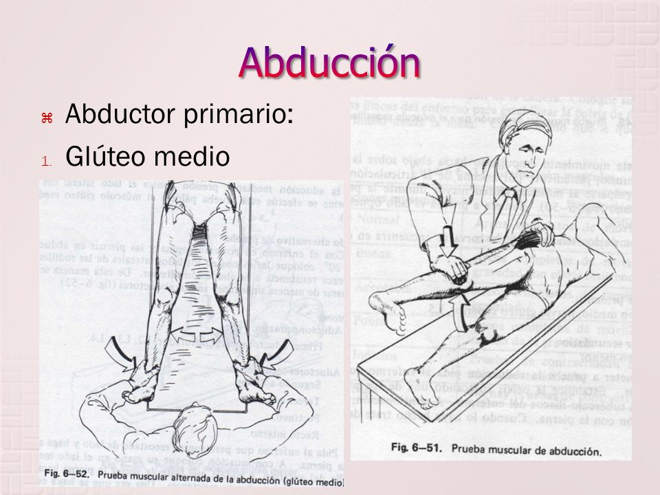 Abducción Abductor primario: Glúteo medio