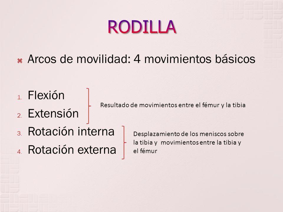 RODILLA Arcos de movilidad: 4 movimientos básicos Flexión Extensión