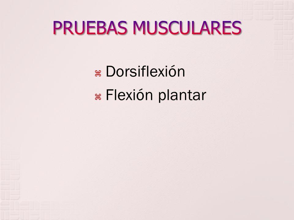 PRUEBAS MUSCULARES Dorsiflexión Flexión plantar