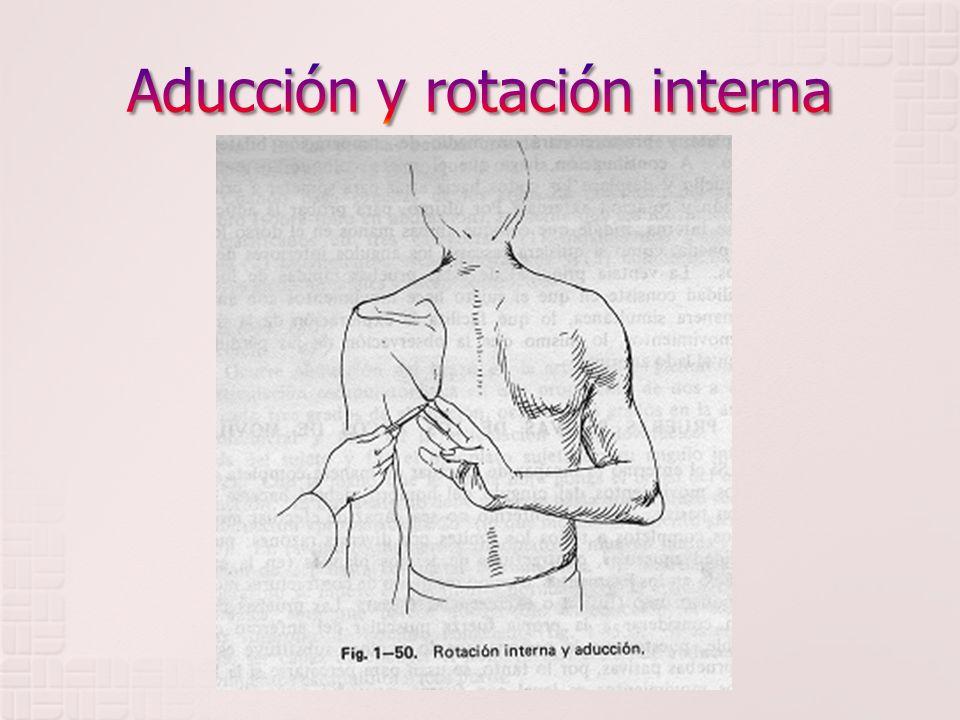 Aducción y rotación interna