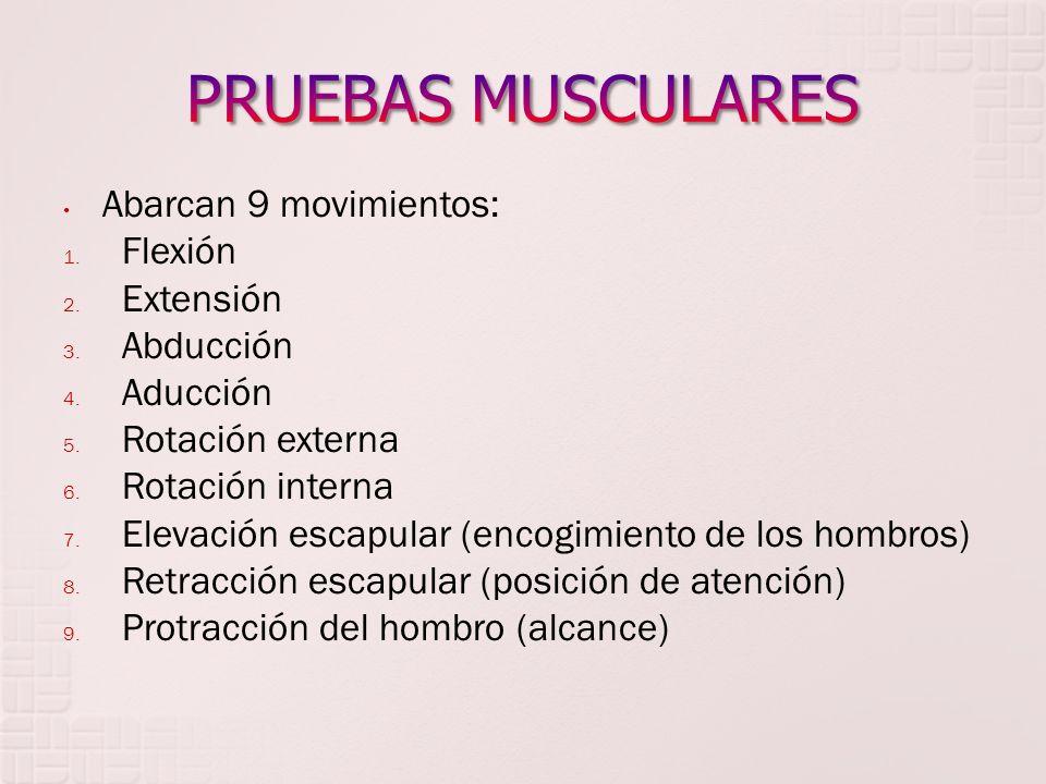 PRUEBAS MUSCULARES Abarcan 9 movimientos: Flexión Extensión Abducción