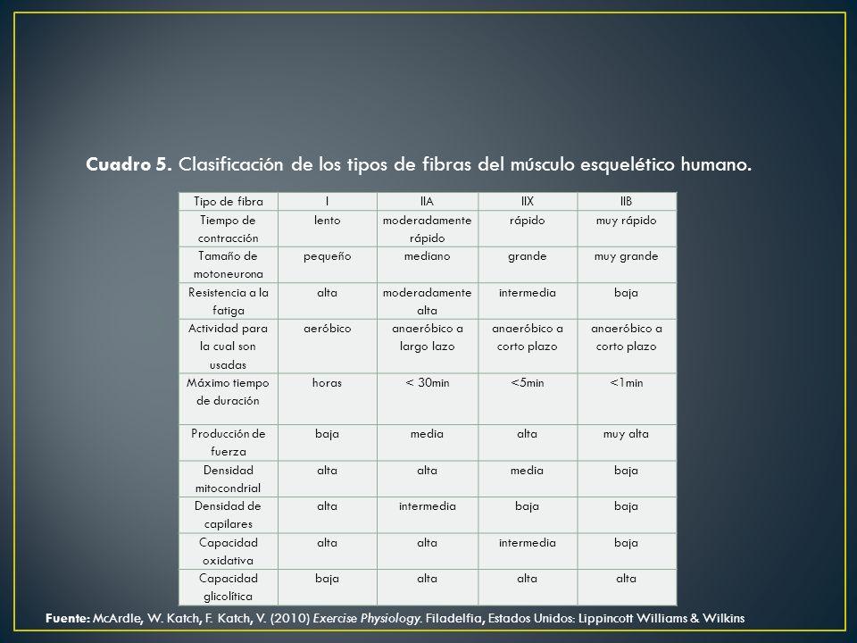 Cuadro 5. Clasificación de los tipos de fibras del músculo esquelético humano.