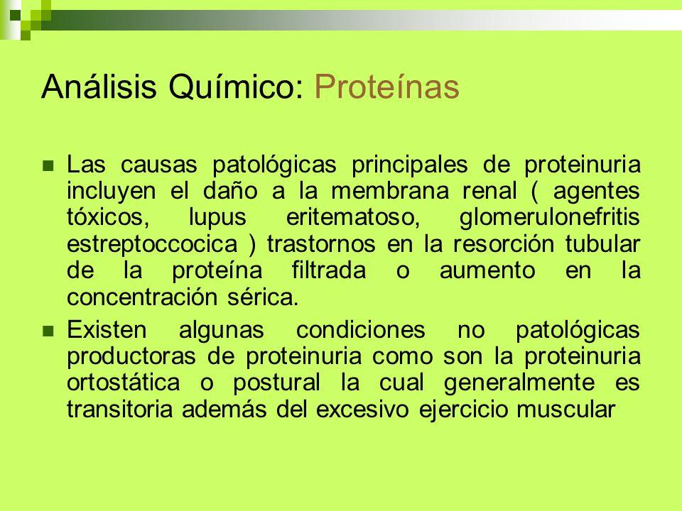 Análisis Químico: Proteínas