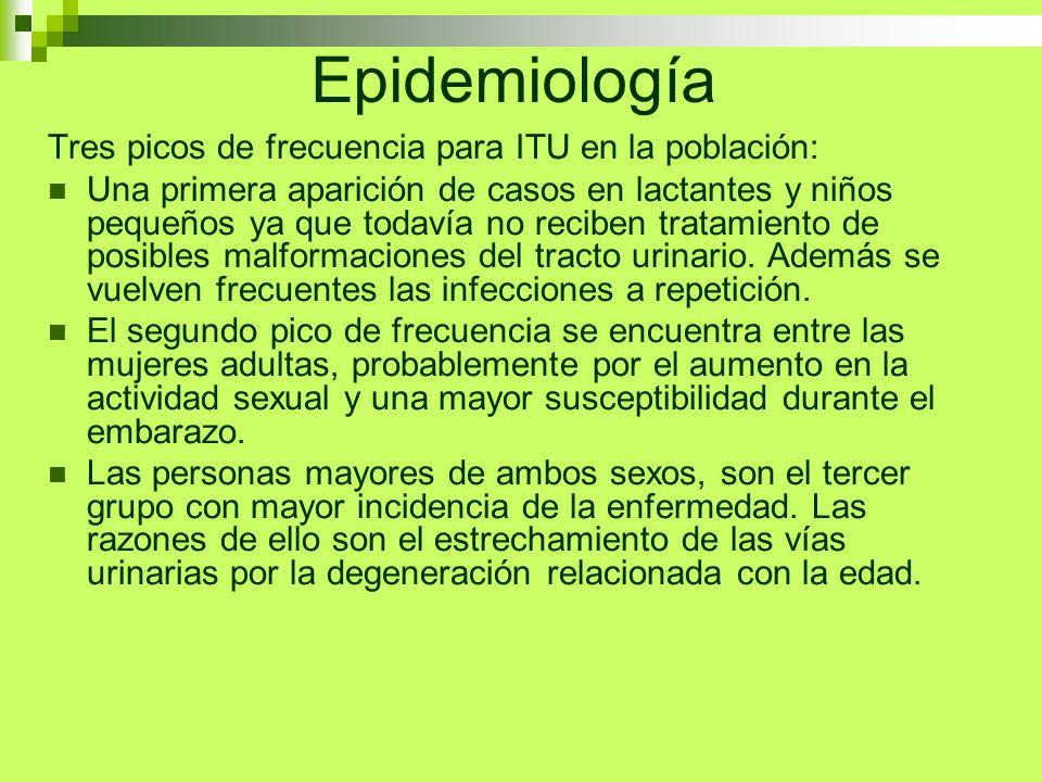 Epidemiología Tres picos de frecuencia para ITU en la población: