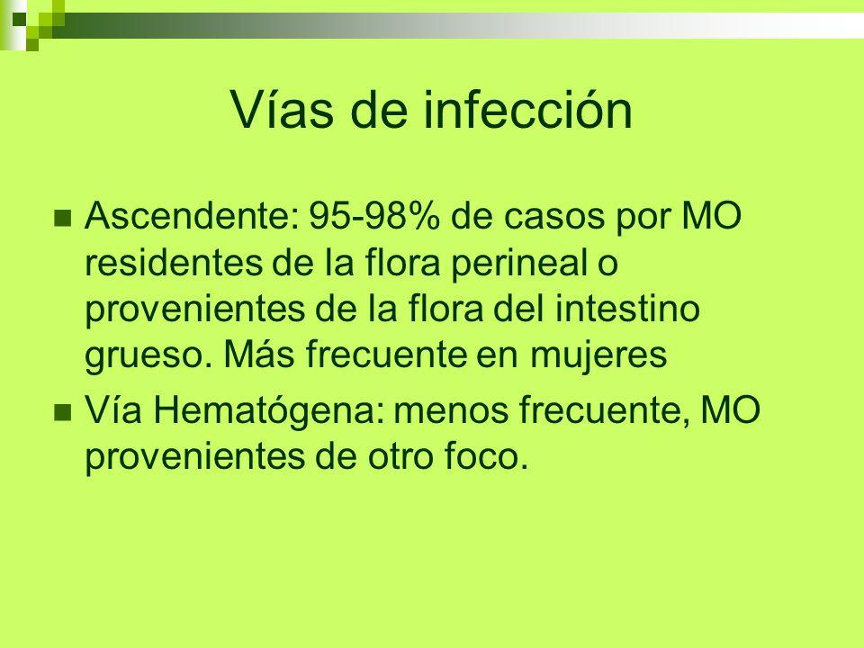 Vías de infección