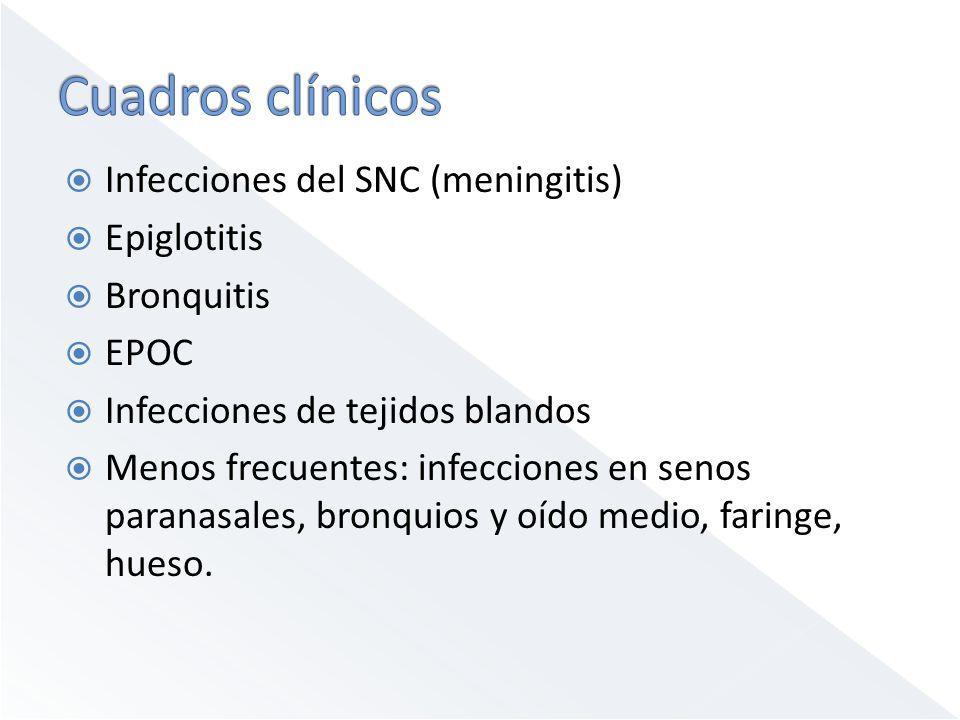 Cuadros clínicos Infecciones del SNC (meningitis) Epiglotitis