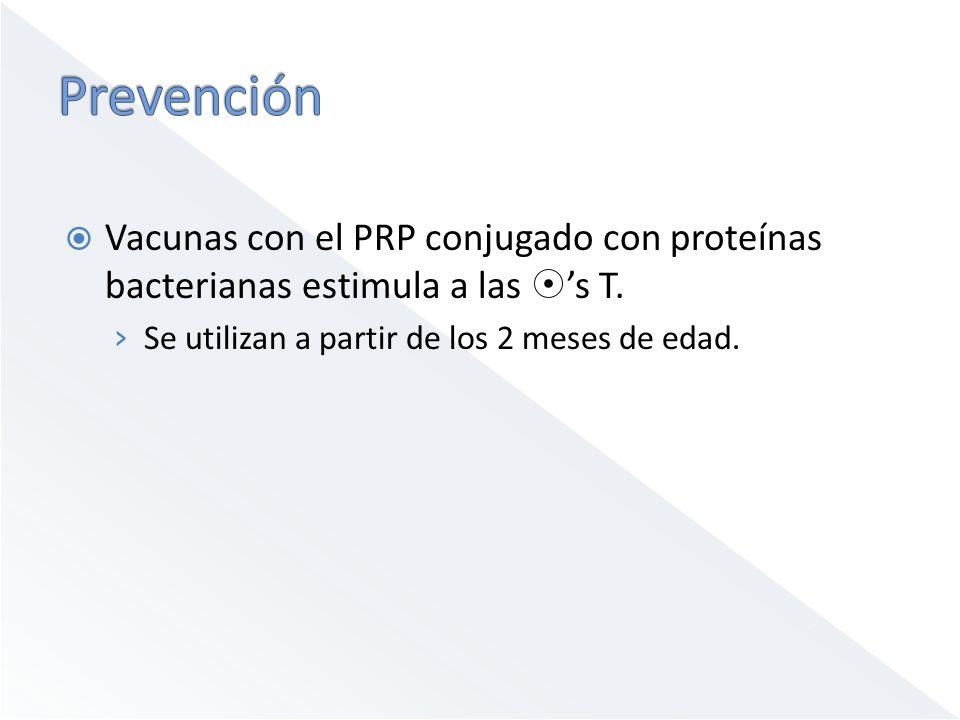 Prevención Vacunas con el PRP conjugado con proteínas bacterianas estimula a las 's T.