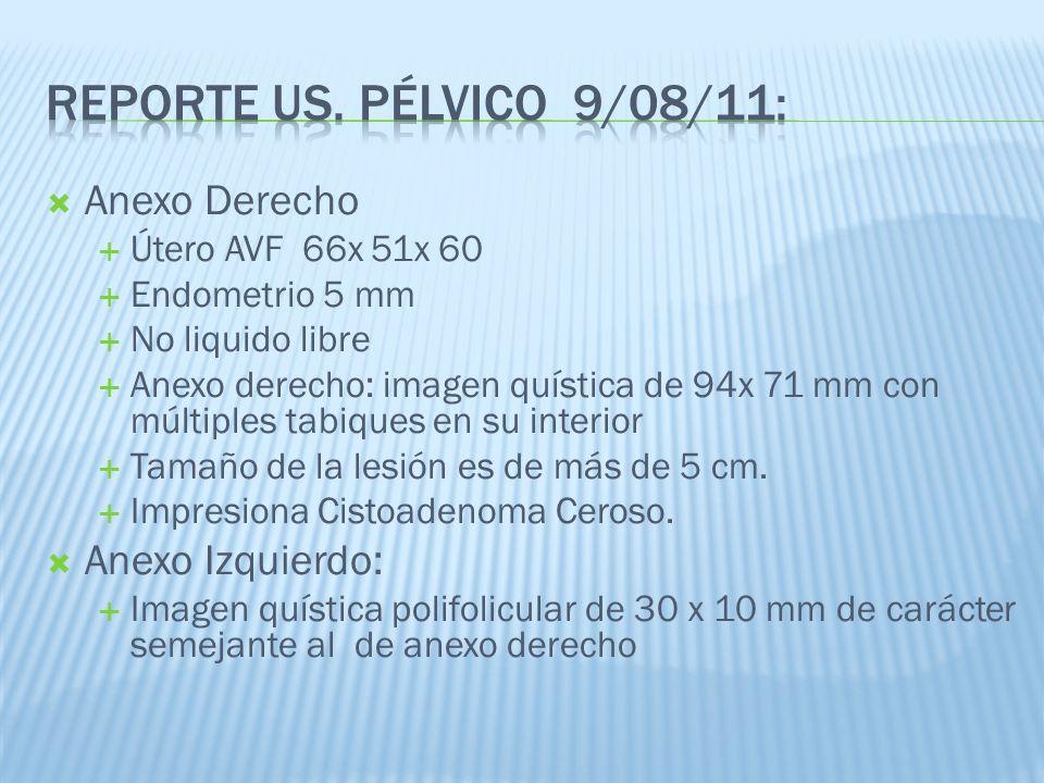 Reporte US. Pélvico 9/08/11: Anexo Derecho Anexo Izquierdo: