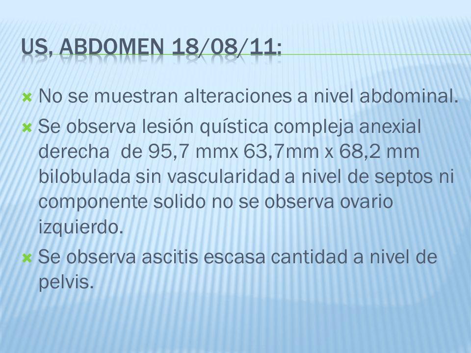 US, abdomen 18/08/11: No se muestran alteraciones a nivel abdominal.