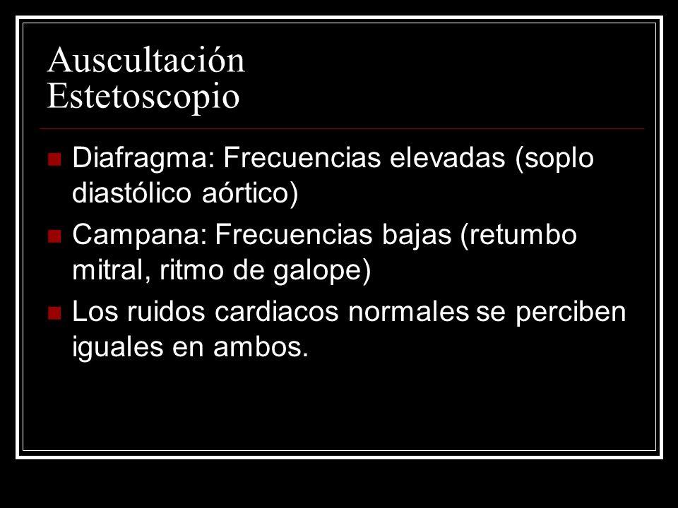 Auscultación Estetoscopio