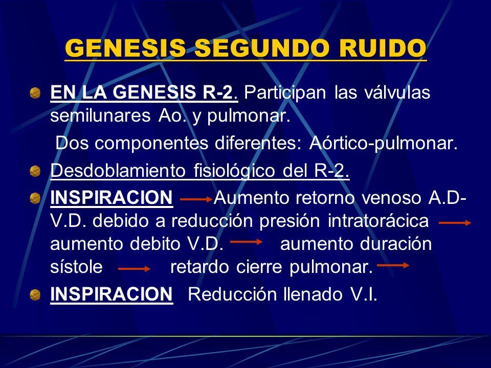 GENESIS SEGUNDO RUIDOEN LA GENESIS R‑2. Participan las válvulas semilunares Ao. y pulmonar. Dos componentes diferentes: Aórtico-pulmonar.