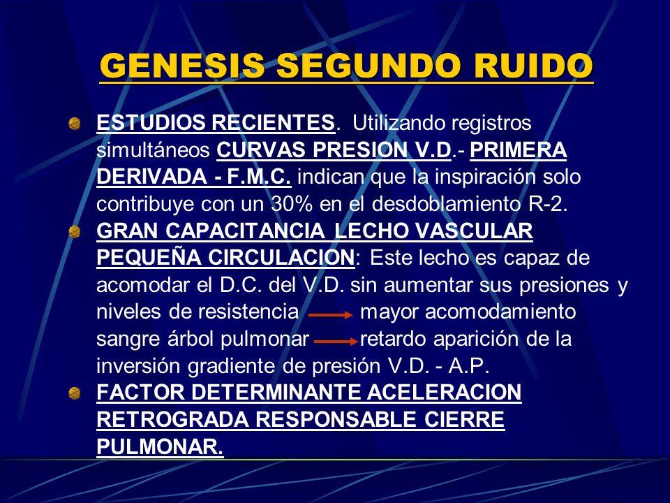 GENESIS SEGUNDO RUIDO