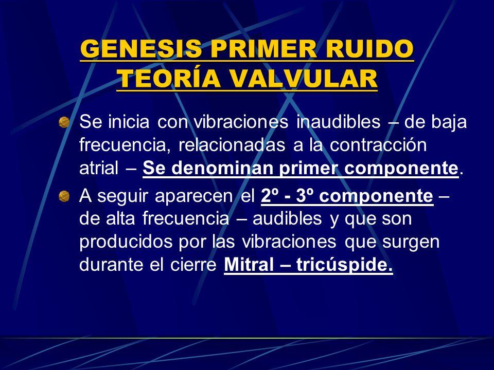 GENESIS PRIMER RUIDO TEORÍA VALVULAR