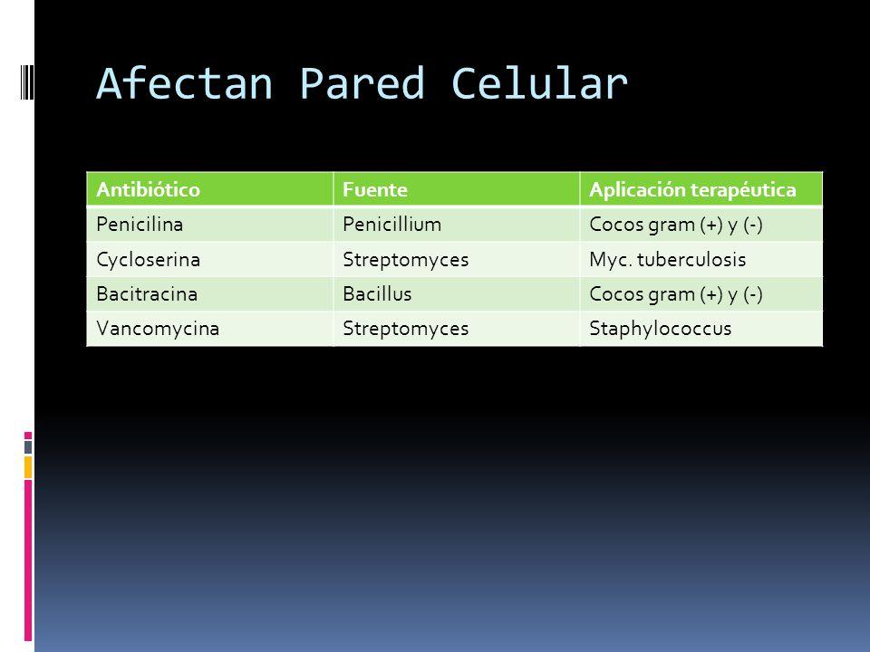 Afectan Pared Celular Antibiótico Fuente Aplicación terapéutica