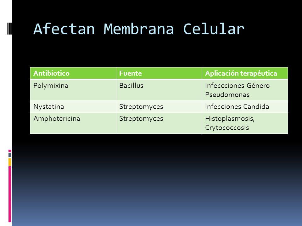 Afectan Membrana Celular