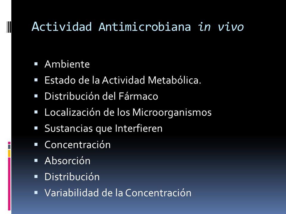Actividad Antimicrobiana in vivo