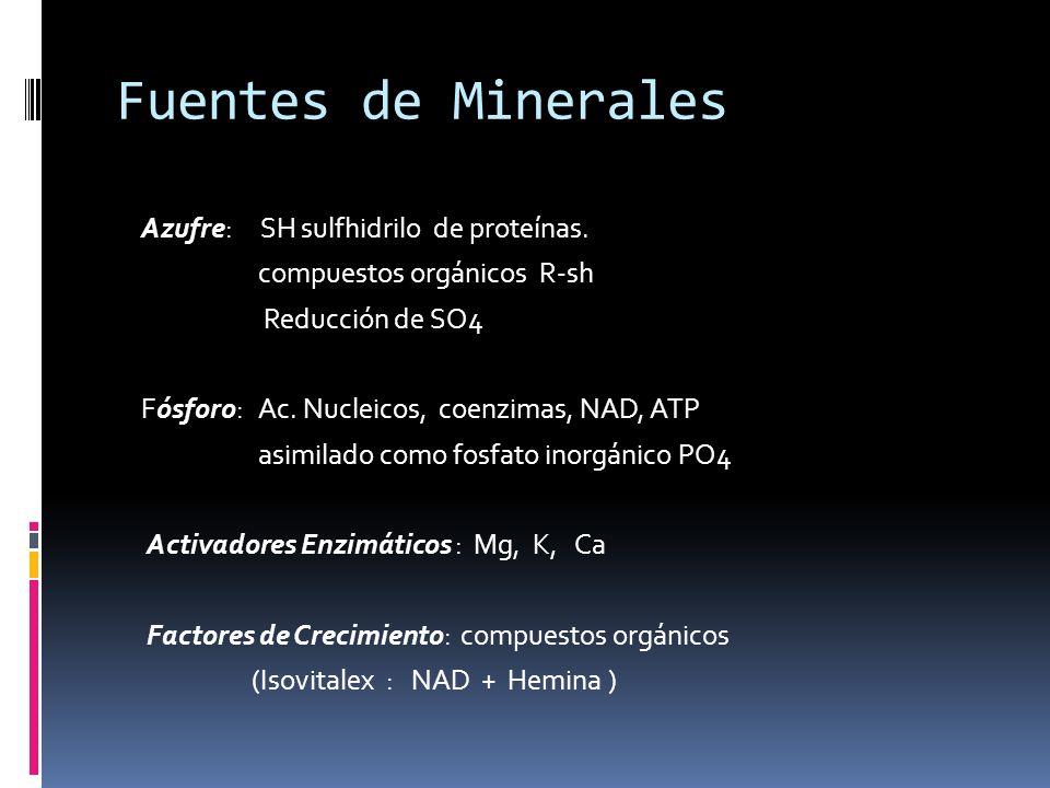 Fuentes de Minerales