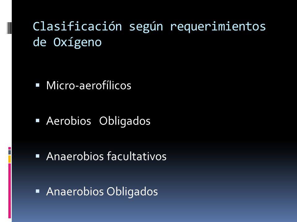 Clasificación según requerimientos de Oxígeno